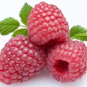 d_fruit-29